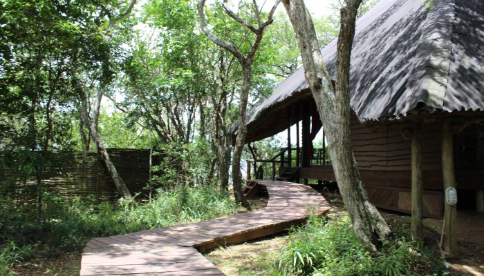 Nibela Lake Lodge KZN