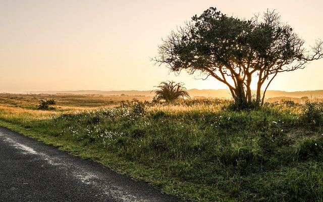 History of the iSimangaliso Wetland Park